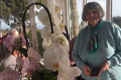 orchids6