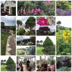 A Gardening Montage