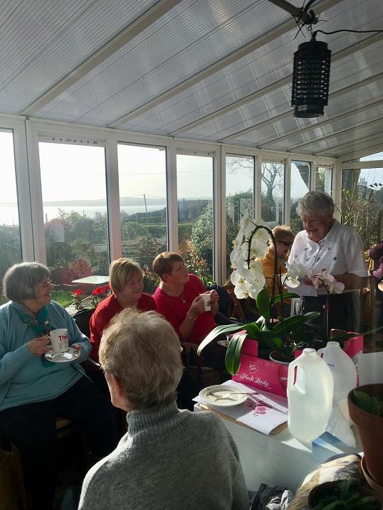 Gardening Report – 11 Feb 2019