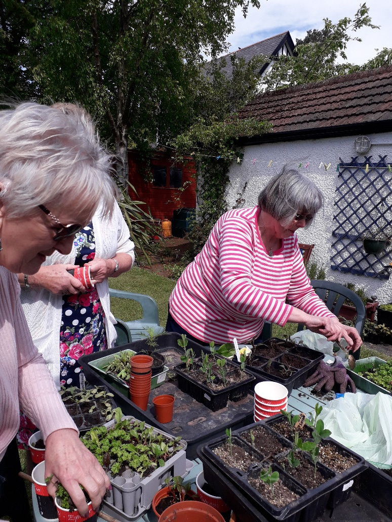 Gardening report – 13th May 2019