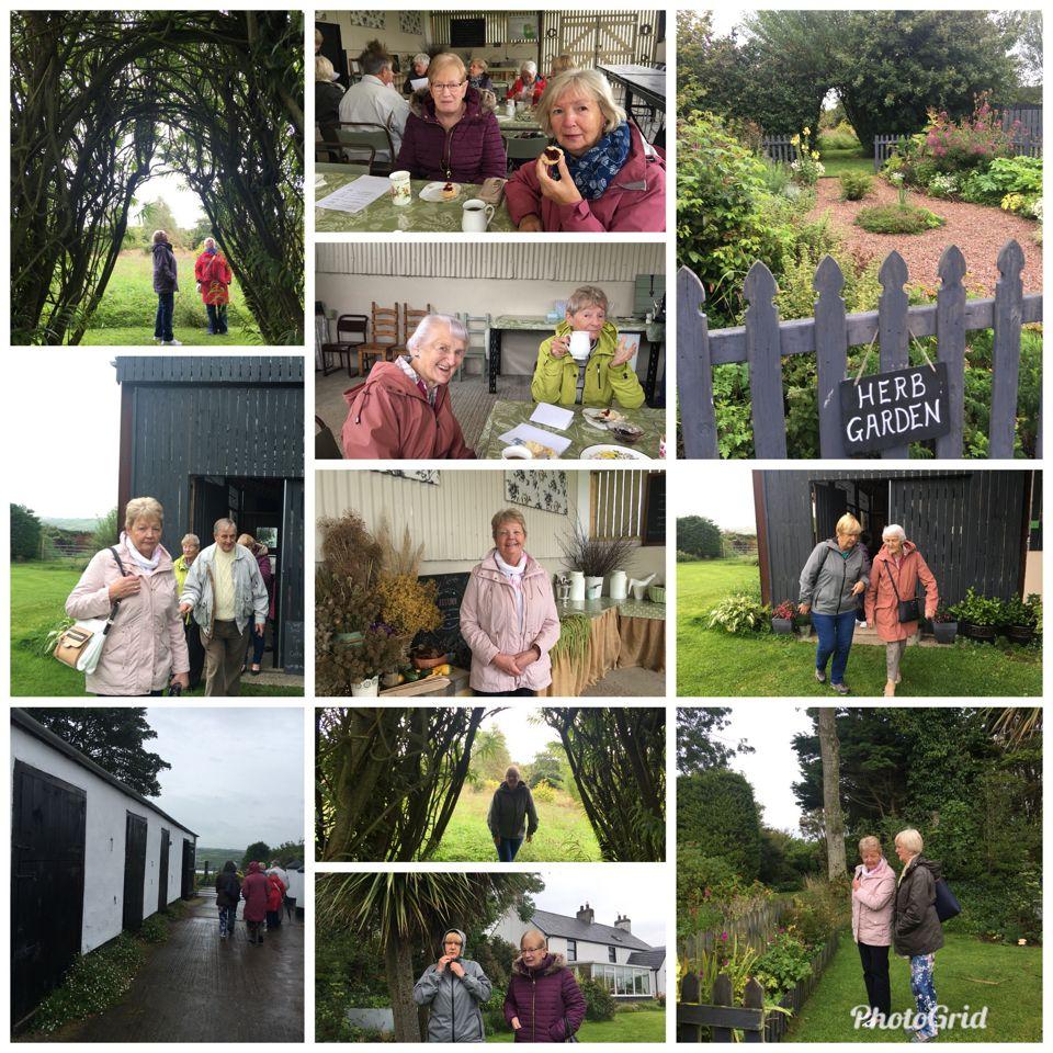 Visit to Kilcoan Gardens