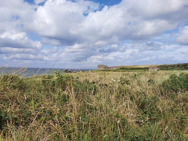 Bushmills_Walk_Report